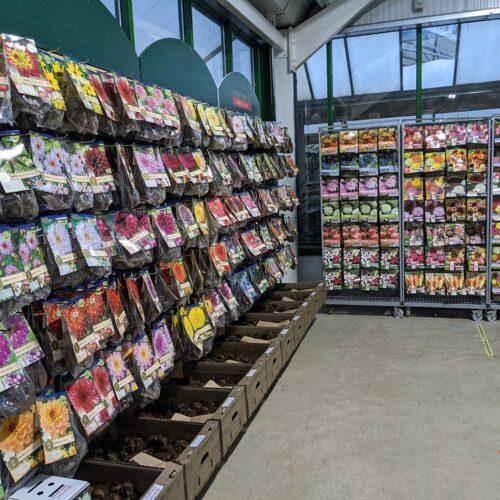 Planting bulbs for sale at Avenue nurseries garden centre, alton